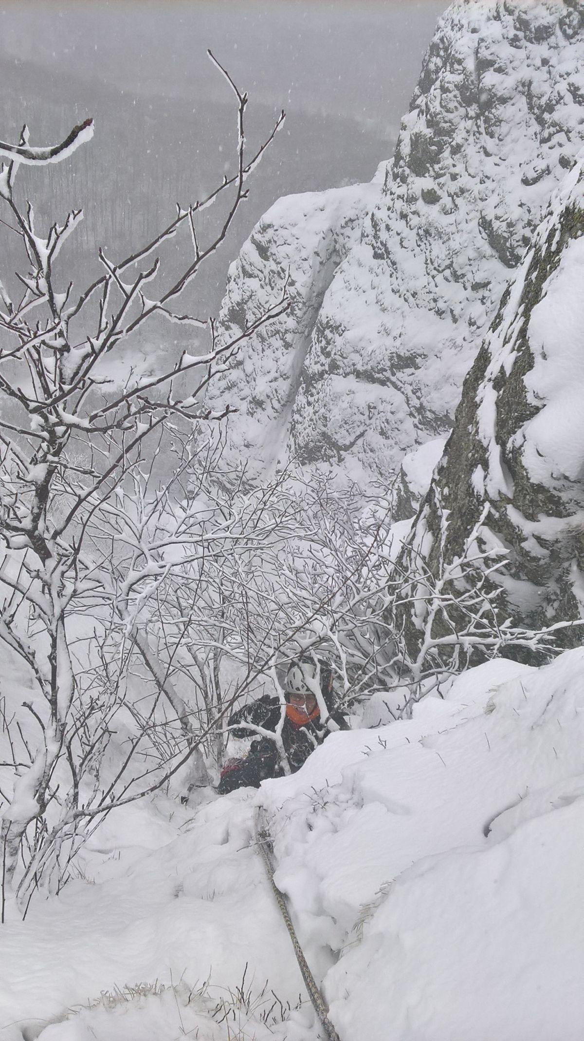 Misto alberi in uscita dall'ultimo tiro